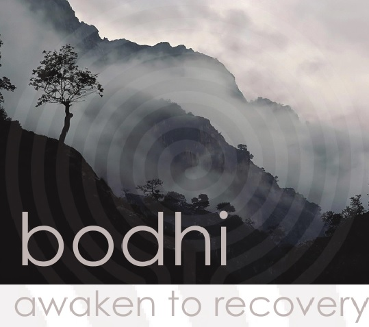 BODHI Mindful Recovery | Mindfulness | Relapse Prevention