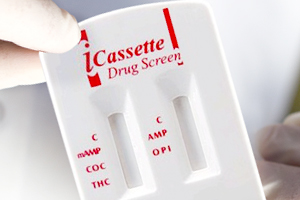 Ammons Analytical Lasboratory - ICASSETTE -Choopers Guide