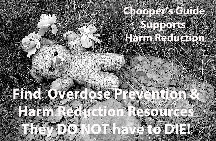 ChoopersGuide- Overdose Prevention