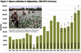 Drug War. Who is Responsible?